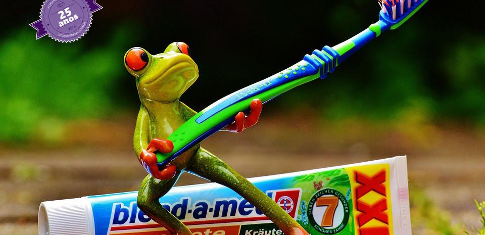 escova
